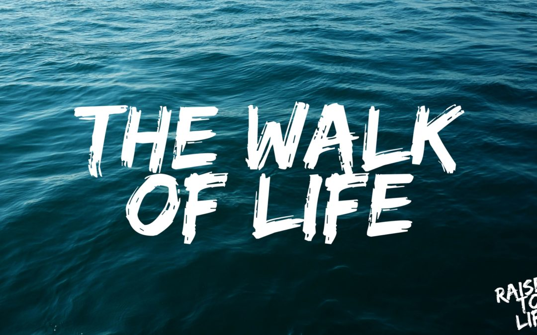 Raised to Life: The Walk of Life