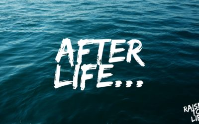 Raised to Life: After Life
