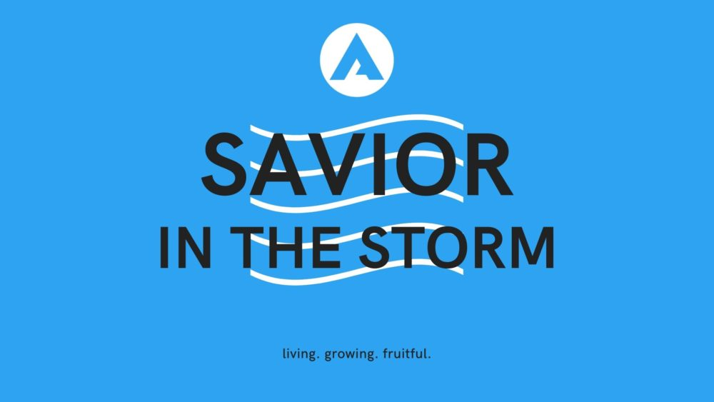 Savior in the Storm Image
